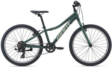 "Jalgratas Giant XtC Jr 24 Lite, roheline, 24"""