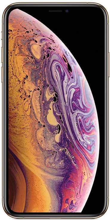 Mobilus telefonas Apple iPhone XS 512GB Gold