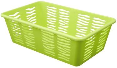 BranQ Basket Zebra1 Green