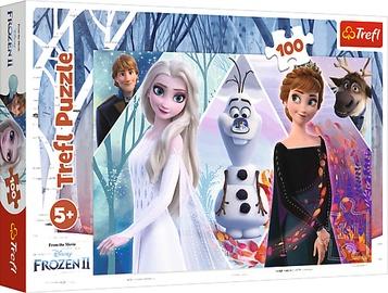Pusle Trefl Frozen II 16418, 100 tk