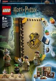 Конструктор LEGO Harry Potter Учёба в Хогвартсе: Урок травологии 76384, 233 шт.