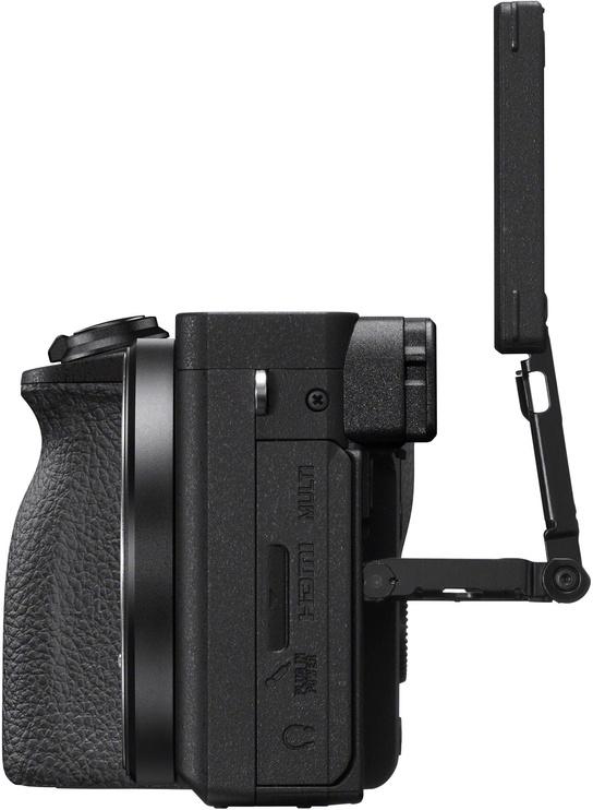 Sony A6600 + 18-135mm OSS