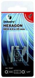 UZGALIS SEŠKAN.X-TRA CIETS HEX5,0X25 3GB