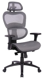 Signal Meble Office Chair Q-488 Grey