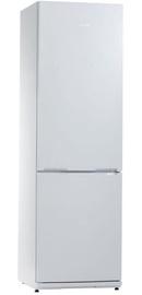 Šaldytuvas Snaige RF39SM-S100210