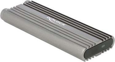 Корпус Delock 42001 USB Type-C 20 Gbps, M.2