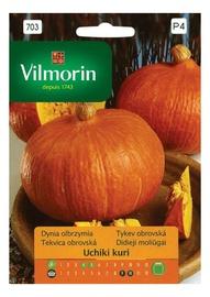 Lielo ķirbju sēklas Vilmorin Premium P703