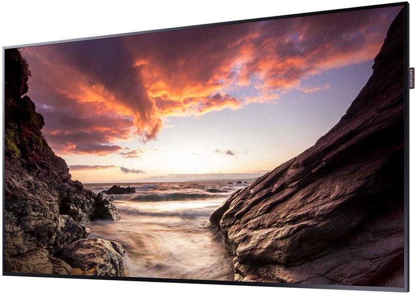 Monitorius Samsung PM55F