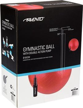 Avento Sport Anti Burst Gym Ball 65cm Gray+ Pump