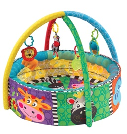 Playgro Ball Activity Nest 337457