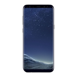 Mobilusis telefonas Samsung Galaxy S8+ G955F, 64 GB, DS