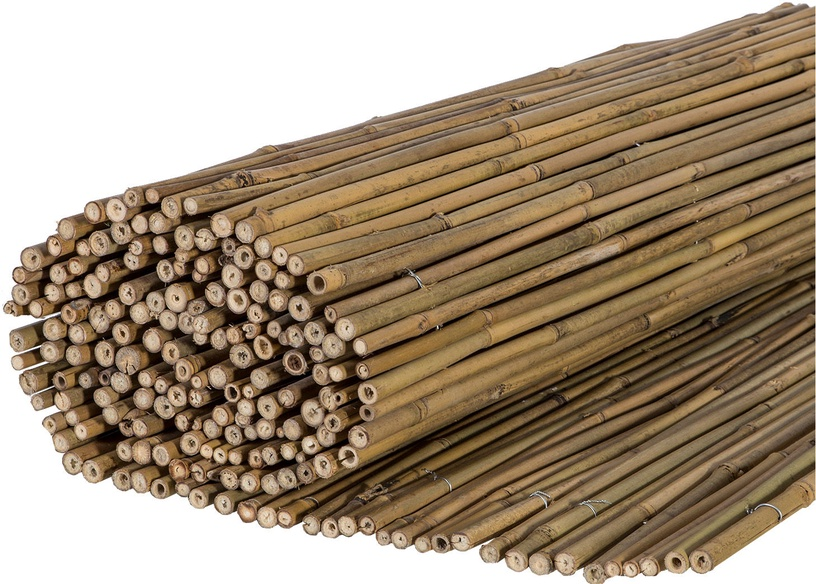 Home4you Reed Fence In Garden D14/16mm 1.5x3m 83915