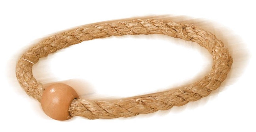 Eichhorn Outdoor Ring Game