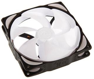 Noiseblocker Fan NB-eLoop Series 120mm B12-1