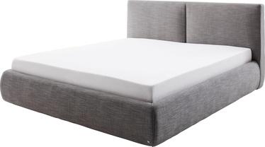 Кровать Meise Möbel Atesio, антрацитовый, 225x199 см, с матрасом, с решеткой