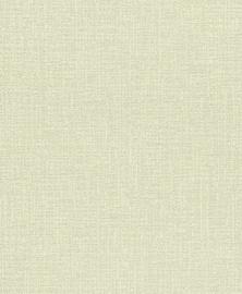 Tapetas vinilinis popierinis Rasch 305449 Auswahl 2005, žalsvas, tekstūrinis