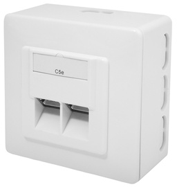Digitus CAT 5e Class D Wall Outlet Shielded Surface Mount