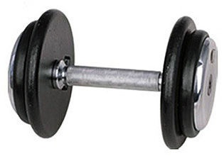 inSPORTline Single-Handed Dumbbell Profi DBS2601 45kg