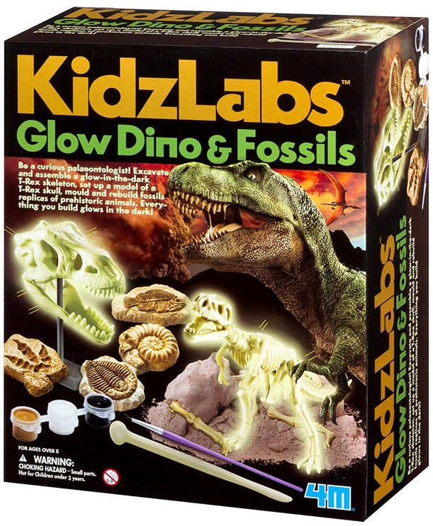 4M KidzLabs Glow Dino & Fossils 5528