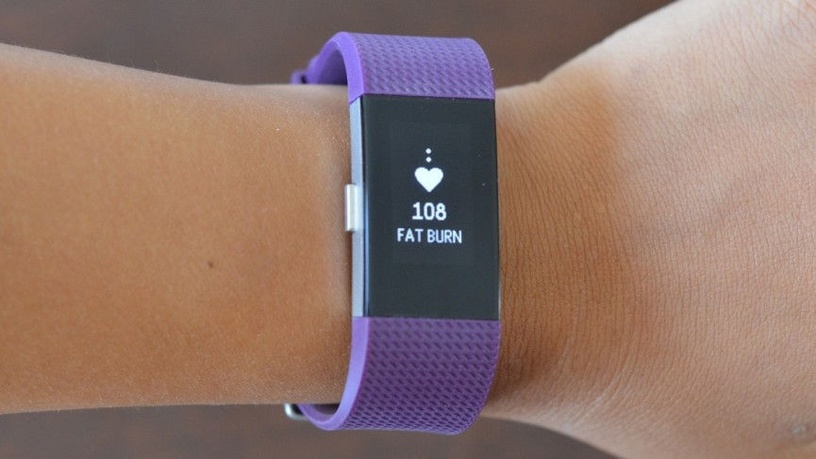 Fitbit Charge 2 Large Plum/Silver