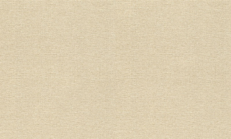 Flizelino tapetai, Rasch, 949810, Maximun XV, šviesiai rudi, vienspalviai