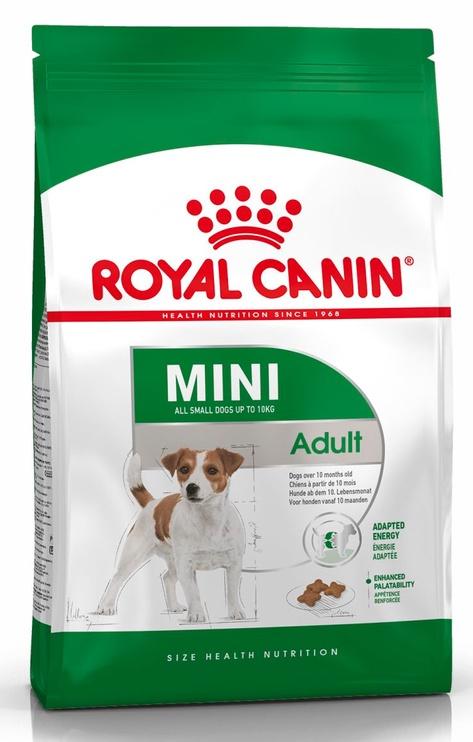 Sausas ėdalas šunims Royal Canin Mini Adult, 800 gr
