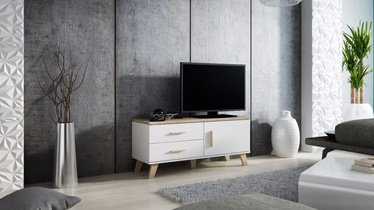 Cama Meble Lotta 120 TV Stand White/Sonoma Oak