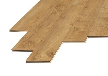 Lamineeritud puitkiudpõrand Domoletti Domoletti D3308, 8 mm, 33