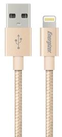 Energizer Cable USB / Apple Lightning Gold 1.2m