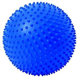 Togu Senso Ball Amethyst 23cm