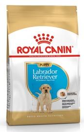 Сухой корм для собак Royal Canin BHN Labrador Retvrievier Puppy 3kg