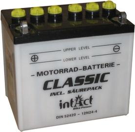Аккумулятор IntAct Classic 12N24-4, 12 В, 24 Ач