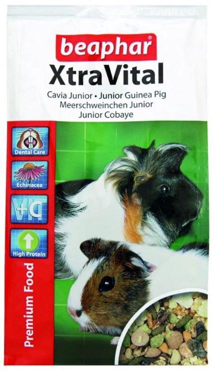 Beaphar Xtra Vital Guinea Pig Junior 2.5kg