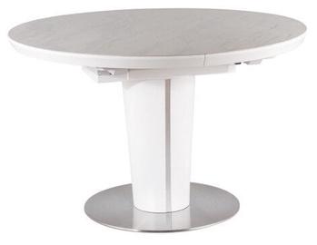 Обеденный стол Signal Meble Modern Orbit Ceramic, белый, 1600x1200x760мм
