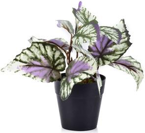 Mondex Artificial Flower In Pot 15cm