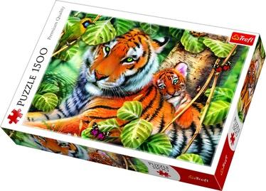 Dėlionė Trefl Two Tigers 26159, 1500 dalių