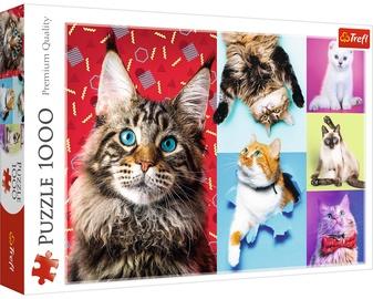 Dėlionė Trefl Happy Cats 10591, 1000 dalių