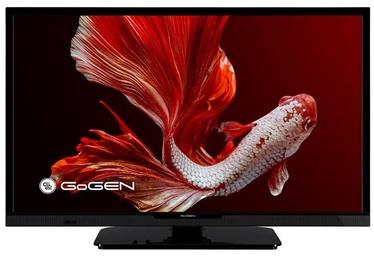 """Televiisor GoGEN GOGTVH24P452T, 24 """""""