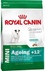 Royal Canin SHN Mini Ageing +12 3.5kg