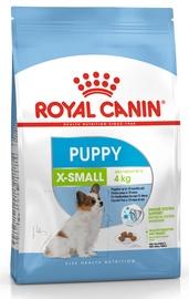 Sausas ėdalas šunims Royal Canin X-Small Puppy, 1.5 kg