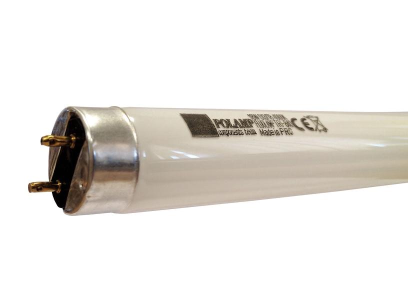 Liuminescencinė lempa Polam T8, 58W, G13, 4000K, 5200lm