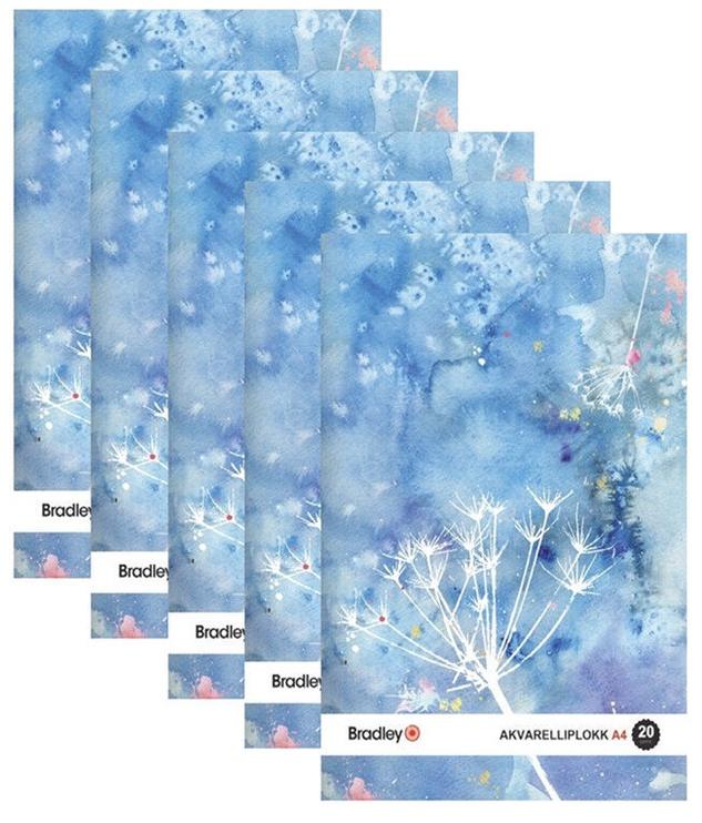 Листы бумаги Bradley Painting Paper A4 20 Pages 5pcs