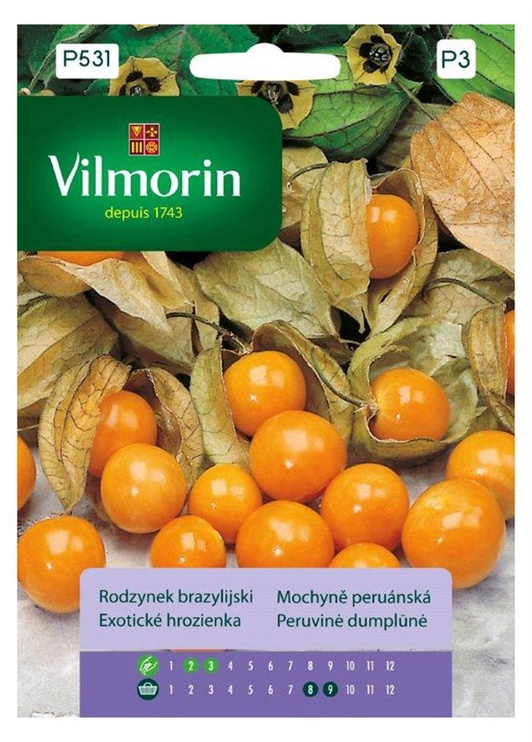 Garšvielu sēklas Vilmorin Peruvine Dumplune