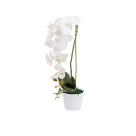 Dirbtinė orchidėja vazone, 50 cm
