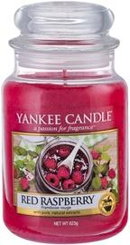 Ароматическая свеча Yankee Candle Classic Large Jar Red Raspberry, 623 г
