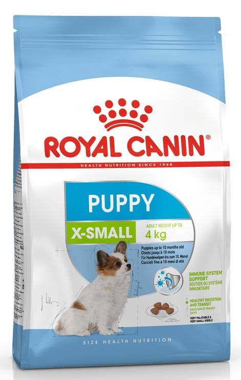 Sausas ėdalas šunims Royal Canin X-Small Puppy , 500 gr
