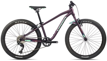 "Jalgratas Orbea MX 24 Dirt, violetne, 24"""
