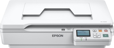 Skeneris Epson WorkForce DS-5500N