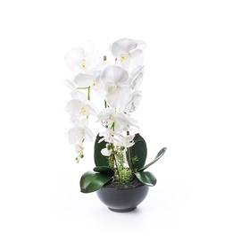SN Artificial Orchid Flower Pot RU-5741 62cm