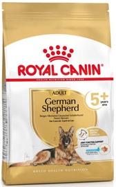 Royal Canin German Shepherd 5+ Adult Dog Dry Food 12kg
